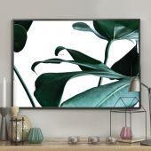 DecoKing - Plakat ścienny – Rainforest