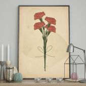 DecoKing - Plakat ścienny - Carnation Flower