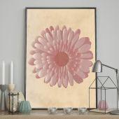 DecoKing - Plakat ścienny - Gerber Flower