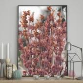 DecoKing - Plakat ścienny - Field Flowers