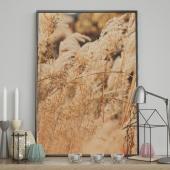 DecoKing - Plakat ścienny - Nature